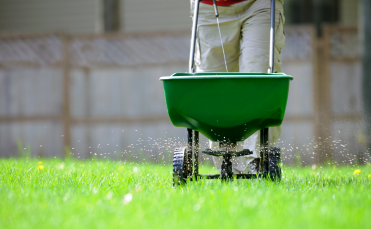 best 5 lawn fertilizers
